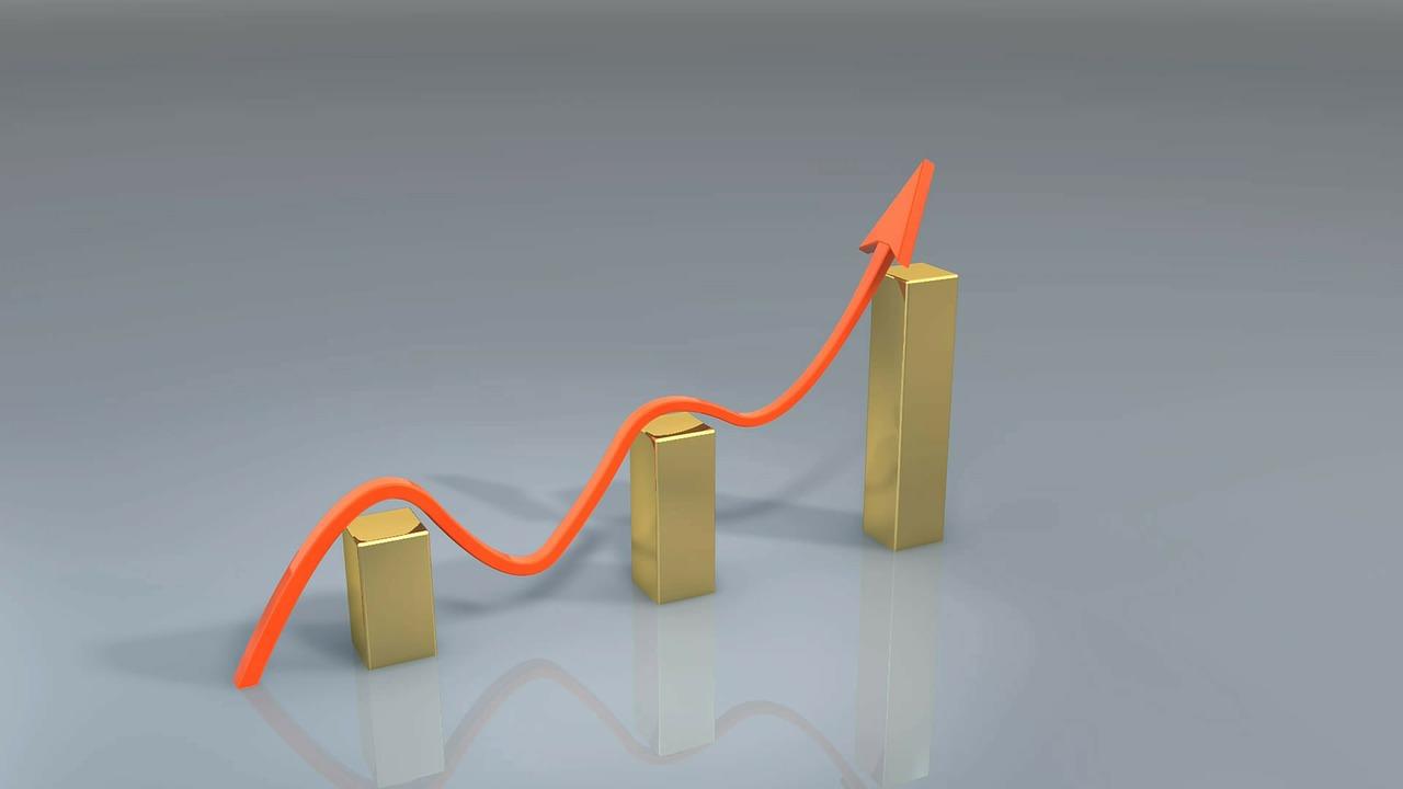 צמיחה עסקית חכמה